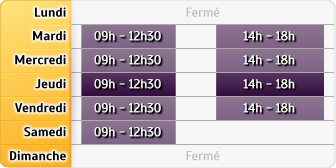 Horaires Allianz Patrick Berlemont