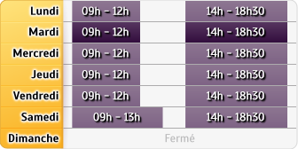 Horaires AXA Assurance ANTHONY FROUDIERE