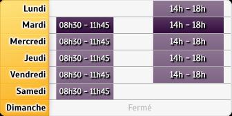Horaires Aviva Assurance Brioude Auvergne
