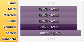 Horaires Banque Populaire Occitane MONTRABE
