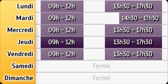 Horaires du MAAF Assurances - Castelnaudary, 17 Q cours de la République
