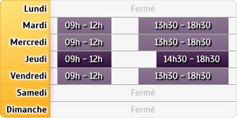 Horaires MAAF Assurances - Lyon Jaures
