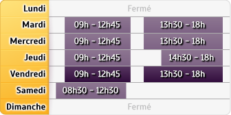 Horaires Credit Mutuel - Lyon 4e