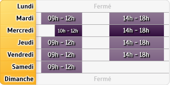 Horaires Allianz Decazeville