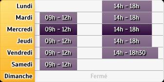 Horaires du Allianz Francois Walter - Altkirch, 6 Route de Carspach