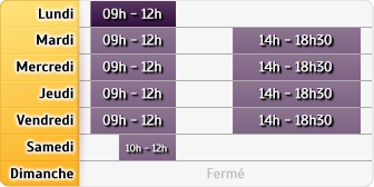 Horaires Allianz Emmanuel Bieri