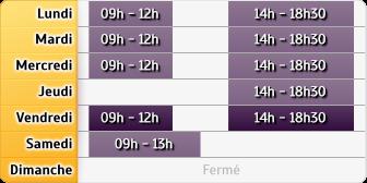 Horaires La Poste Lyon Route De Vienne