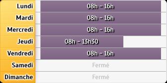 Horaires CAF - Lyon