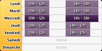 Horaires Allianz - Grenoble Republique