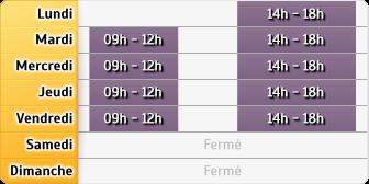 Horaires du Allianz - Fleury Les Aubrais, 400, Rue du Faubourg Bannier