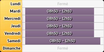 Horaires LCL Castres L'Albinque